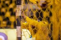 Kolejny mecz Łomży Vive Kielce przełożony