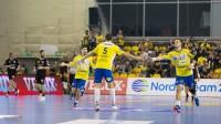 EHF obniżyła karę dla PGE VIVE