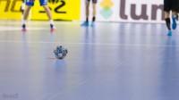 """Liga Mistrzów: pewne """"Lwy"""", szwedzka sensacja i klasa Barcelony"""