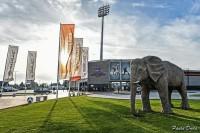 Mecz Bruk-Bet Termalica Nieciecza - Korona Kielce kolejny raz odwołany
