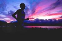 C.D.N: wszystko o szlakach metabolicznych
